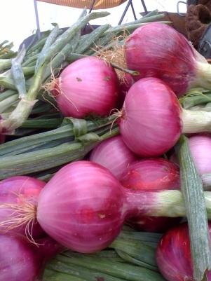 Fresh produce Availabilty 8/9/2010