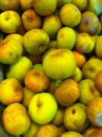 Produce Availability - October 3, 2010