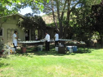 The field kitchen