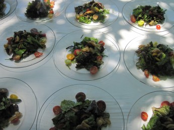 Scrumptious salads with shiitakes, candied garlic, feta, tomatoes, and Windrose Farm greens and chives