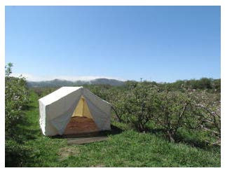 apple_orchard_tent