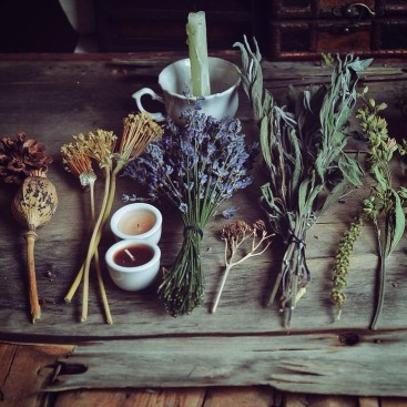 herbs_1024x1024